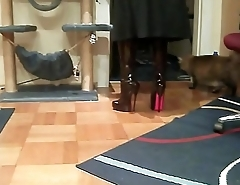 Best Mom In 8 Inch Heels. See pt2 at goddessheelsonline.co.uk